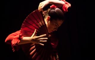 flamenca-baile