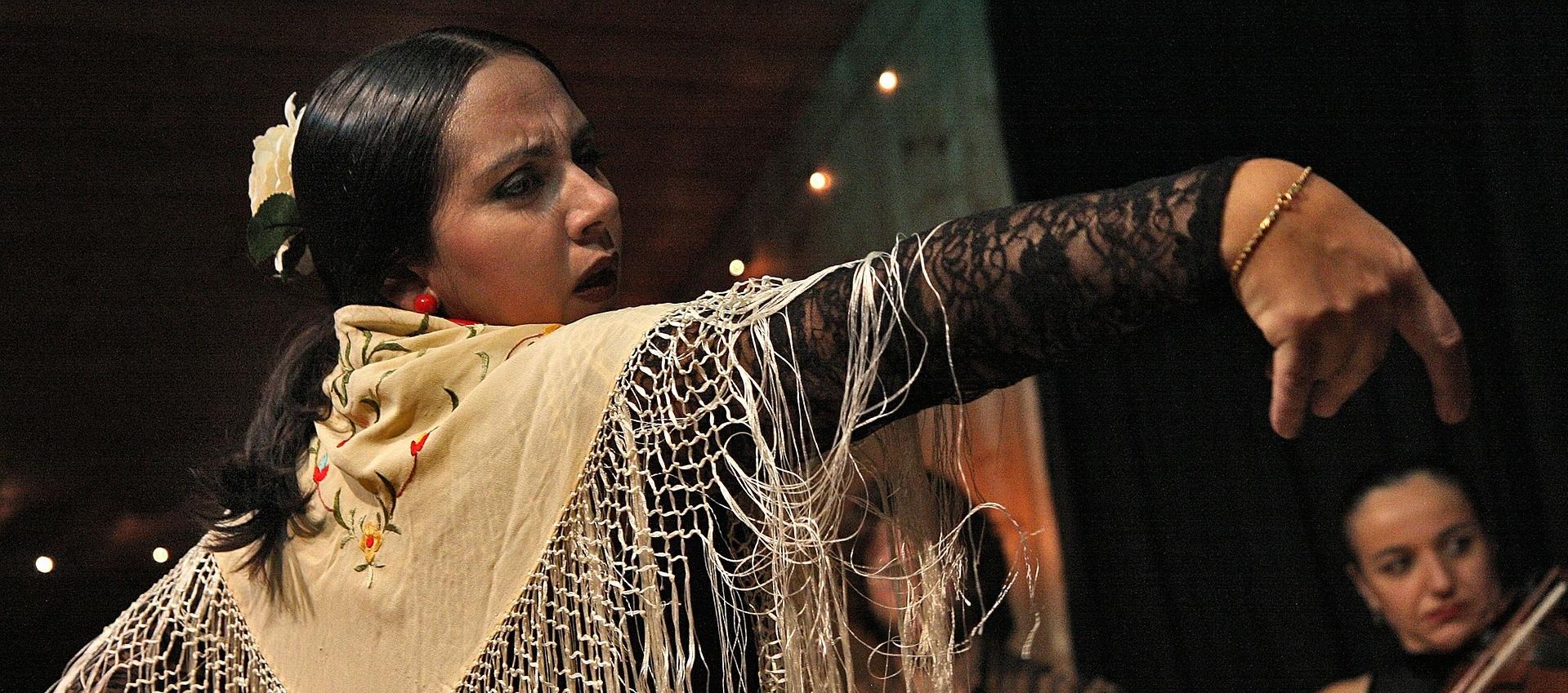 Espectáculos flamencos para eventos
