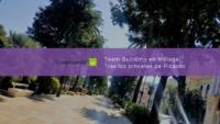 Team Building en Málaga - Tras los pinceles de Picasso